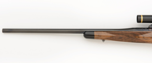 308 Winchester Forend